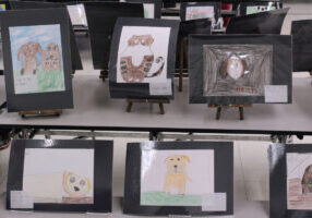 Student drawings of dogs and cats on display in the school gymnasium.